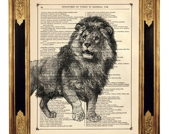Lion Animal Natural History Africa - Vintage Victorian Book Page Art Print Steampunk