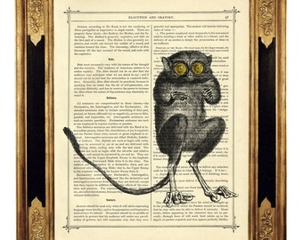 Lemur with yellow Eyes Madagascar Natural History - Vintage Victorian Book Page Art Print Steampunk