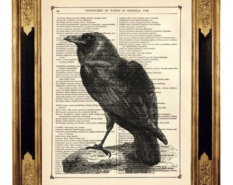 Halloween Raven Crow Bird Animal Natural History - Vintage Victorian Book Page Art Print Steampunk Gothic