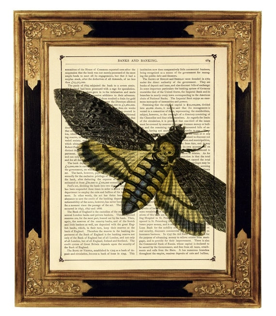Death's Head Moth Insect Gothic Halloween - Vintage Victorian Book Page Art Print Steampunk