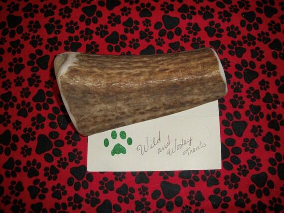 Large Elk Antler Dog Chew Split (Lot 466)
