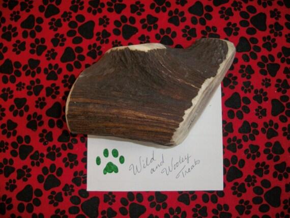 Large Elk Antler Dog Chew (Lot 539)