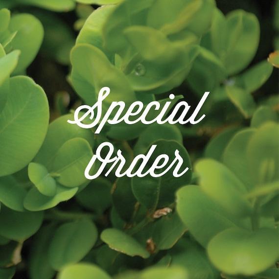 Special Order for ElreneRae