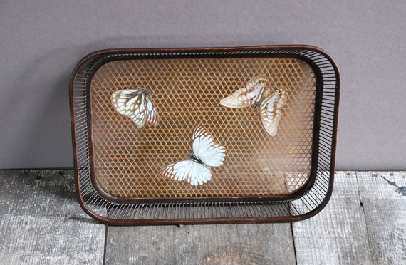 Vintage Wood Butterfly Tray