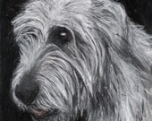 Irish Wolfhound Original Pastel Drawing