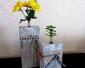 Rustic Test tube Bud vase