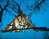 Driftwood light hanging chandelier