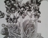 Orchids Original Charcoal Drawing