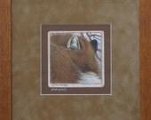 Red Fox Signed Giclee  Print Custom Framed