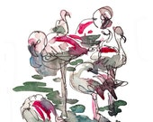 Flamingoes in pink and grey - a watercolor wildlife sketch - archival print from an original watercolor