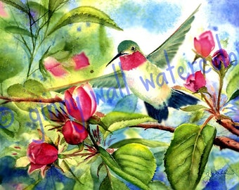 Hummingbird in Peach Blossoms   Matted PRINT by Ginny Wall