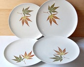 Franciscan Twice Nice Dinner Plates 4 Plates