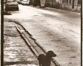 Vagabundo (Homeless) - Black and White Photo - Gelatin Silver Print