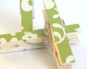 Green and White Floral Decorated Clothes Pins Magnets- Set of 3