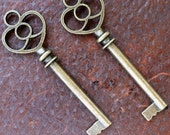 Whoesale Lot 100 pcs Steampunk Victorian wholesale antique bronze skeleton key pendant charm necklace Alice in Wonderland 44 jewelry