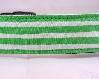 Dog Collar, Martingale Collar, Cat Collar - All Sizes - Ready Set Snow in Green