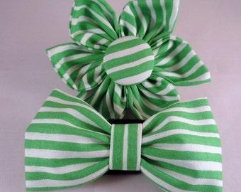 Dog Flower, Dog Bow Tie, Cat Flower, Cat Bow Tie - Ready Set Snow in Green