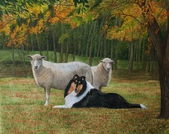 "Limited Edition Collie Print ""Serenity"" by Cindy Alvarado"