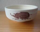 Beetle Bowl