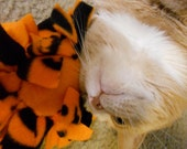 Halloween Catnip Filled Cat Toy. (100% to Feral Cats TNR)