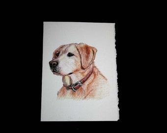 Blonde Lab note cards Labrador Retriever