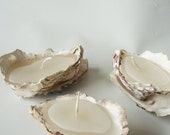 Set of Three Oyster Shell Candle Holders containing white vannila scented candles