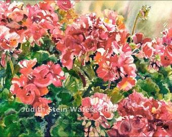 "Pink Geraniums, Green Ivy, Flower Blossoms, Patio Garden, Watercolor Painting Print, Wall Art, Home Decor, ""Gentle Geraniums"" Judith Stein"