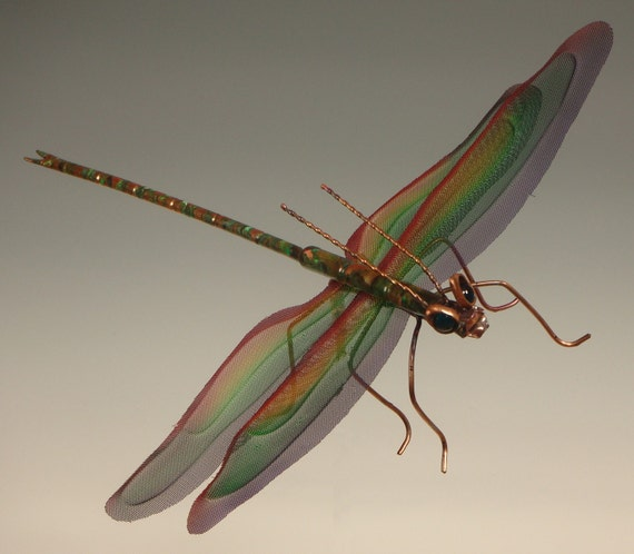 Large Dragonfly with Screened Wings