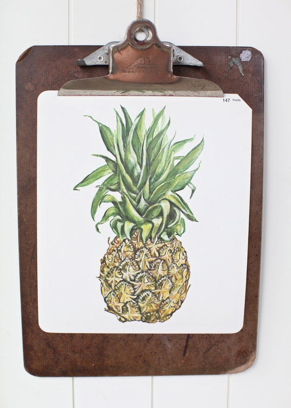 Large vintage language flash card, pineapple, 1980's
