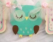 Sleeping owl banner, its a girl banner, owl banner, photo prop,  baby shower banner