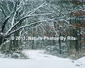 Snow Covered Road Photo Print Blank Greeting Card1