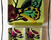 Beautiful Butterfly Glass Tile Magnet Set of 3 Extra Strong