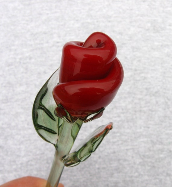 Single stem red rose