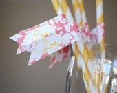 INSTANT DOWNLOAD Pink Lemonade Love Collection - PRINTABLE party flags by Itsy Belle