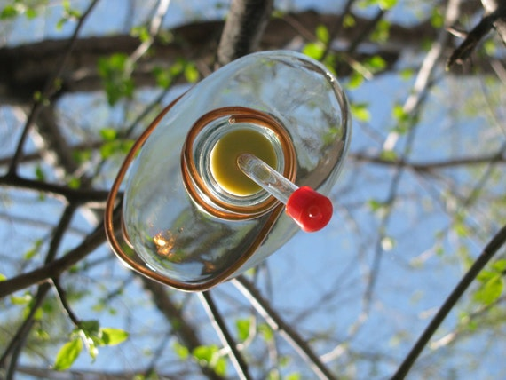 Tequila Bottle Hummingbird Feeder