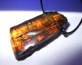 Chiapas Amber Pendant On India Leather