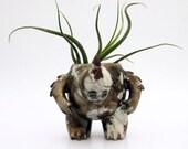 Kaiju Creature Pot (Planter)