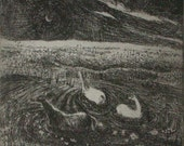 Horses bathing etching by Flora McLachlan, swimming, water, moon and stars, night and buttercups