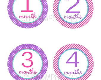 NEW- Monthly Onesie Stickers- Pink and Purple- Sarah