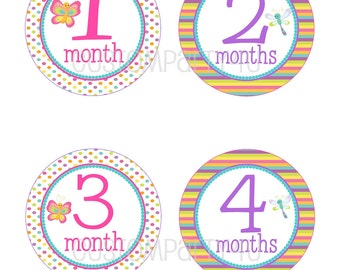 NEW- Monthly Onesie Stickers- Pink Butterfly- Molly