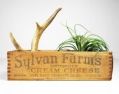 RESERVED for Whitney - Vintage Wooden Dovetailed Cream Cheese Box - Sylvan Farms