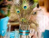 Peacock Feather  Centerpiece Set