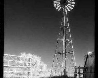 "Texas Windmill Photo Notecard, Black and White, 4.25""x5.5"", blank"