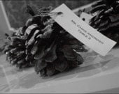 Reserved for Vicki - Glitter Pine Cone Place Cards Holders