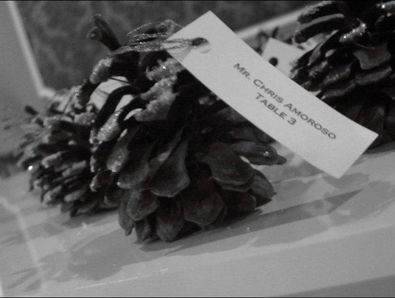 Glitter Pine Cone Place Cards, Place Card Display, Escort Cards SET/25