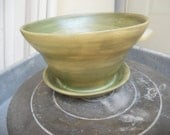 "5"" Planter/ Flower Pot with attatched water dish. Tea green"