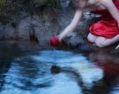 Quest, Seizing the Treasure - 4x6 Fine Art Photograph