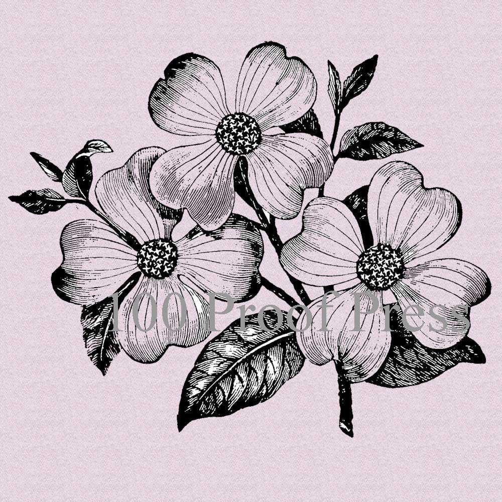 It's just a photo of Lively Flower Blooming Drawing