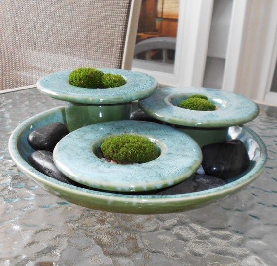 Terrarium,  ZEN Dish GARDEN, Fathers Day Gift,  Live Moss