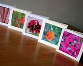 Handmade Cards // Mix 6 // Pack of 5 Photo Cards // Any occasion